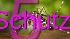 2015-11-08 - Schutzhuelle